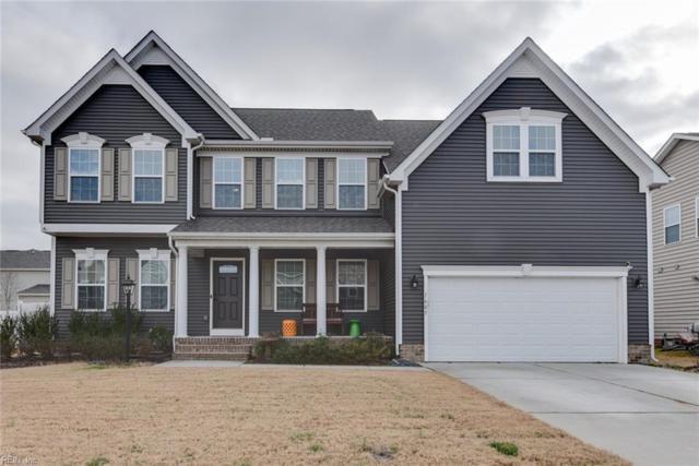 1605 Teton Ct, Chesapeake, VA 23320 (#10239485) :: Berkshire Hathaway HomeServices Towne Realty