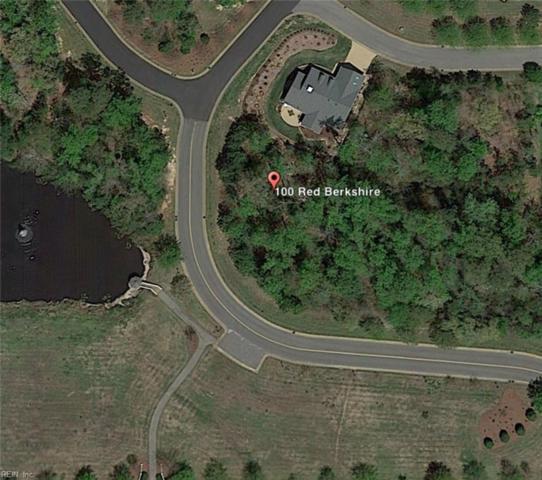 100 Red Berkshire, James City County, VA 23188 (MLS #10239740) :: AtCoastal Realty