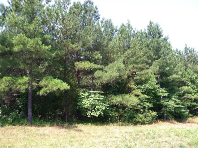 Lt 11B Sylvia Ave, Gloucester County, VA 23072 (#10239903) :: Atkinson Realty
