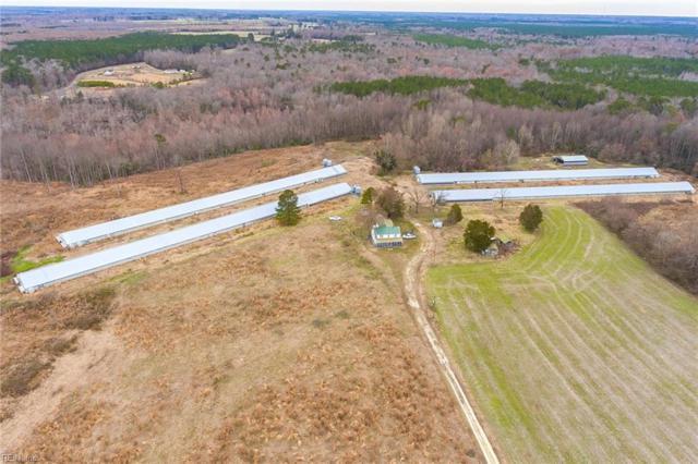 34660 Sandy Ridge Rd, Franklin, VA 23851 (#10240055) :: Abbitt Realty Co.