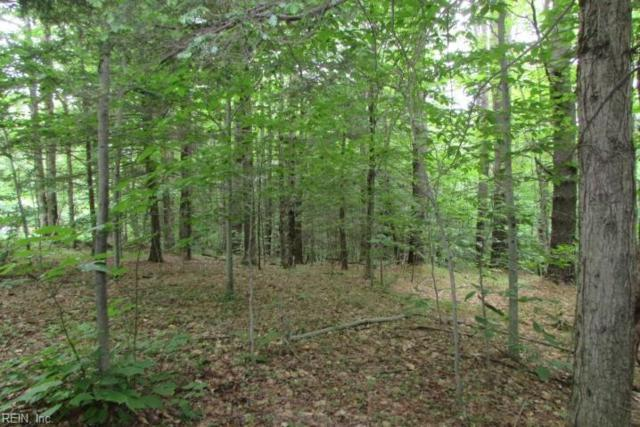 Lot 53 New Beginning Rd, King & Queen County, VA 23085 (#10240359) :: RE/MAX Alliance