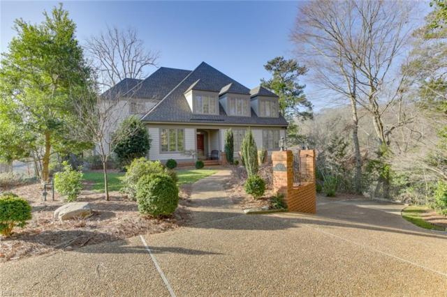 133 Cove Point Ln, Williamsburg, VA 23185 (#10240499) :: AMW Real Estate
