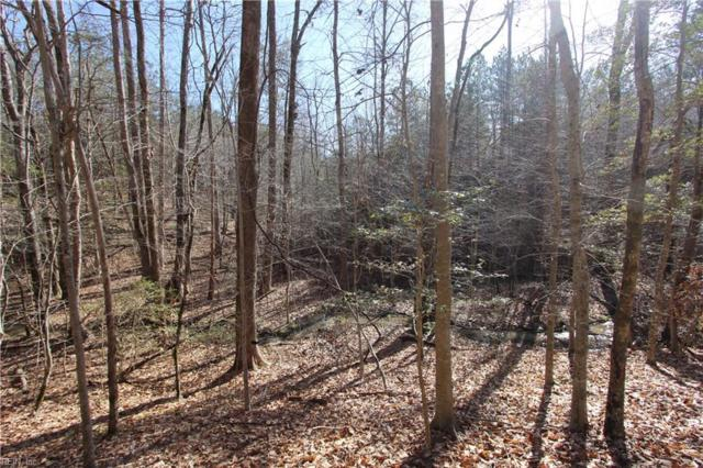 Lot 6 Deerwood Ct, Gloucester County, VA 23061 (#10240714) :: Rocket Real Estate