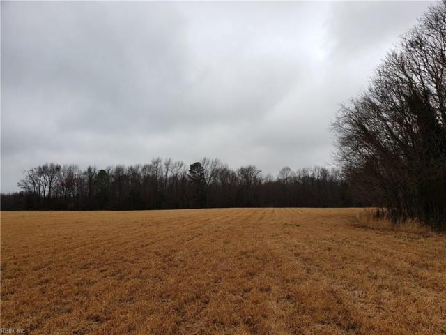 5 Acr Old Stage Hwy, Isle of Wight County, VA 23430 (#10241090) :: Abbitt Realty Co.