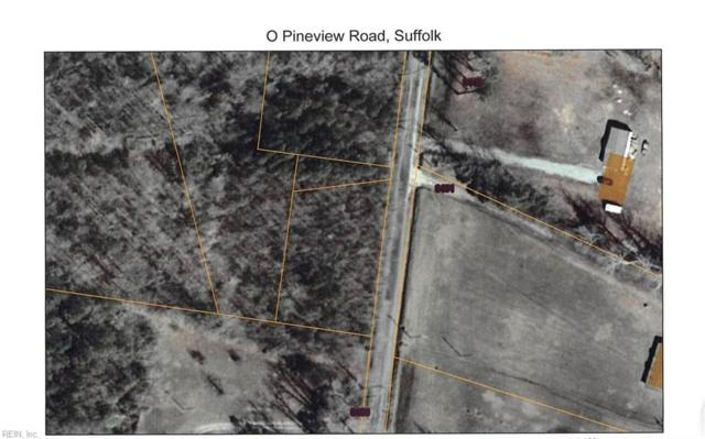 1 Acre Pineview Tax Map Id 62*5D Rd, Suffolk, VA 23437 (#10241382) :: Abbitt Realty Co.