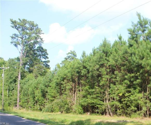 10AC Fort Huger Dr, Isle of Wight County, VA 23430 (MLS #10241393) :: Chantel Ray Real Estate