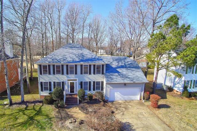 408 Las Gaviotas Blvd, Chesapeake, VA 23322 (#10241412) :: AMW Real Estate