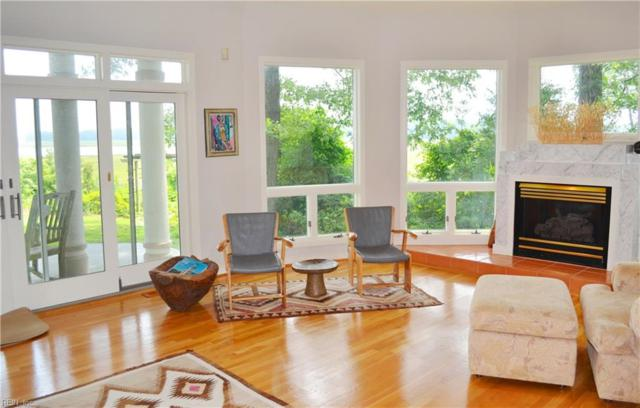 116 Settlers Landing Rd, Suffolk, VA 23435 (#10241460) :: AMW Real Estate