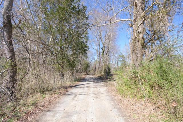 13474 Hatchers Ln, Isle of Wight County, VA 23430 (MLS #10242545) :: Chantel Ray Real Estate
