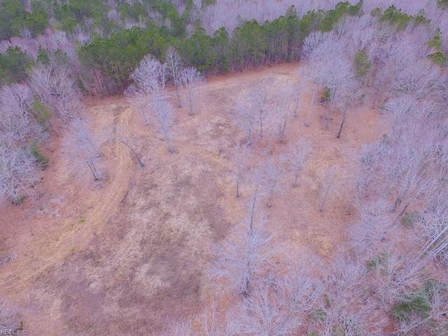 55 Ac Fox Chase Dr, Surry County, VA 23839 (MLS #10244507) :: Chantel Ray Real Estate