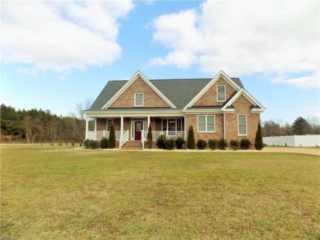 15115 Batiste Ct, Isle of Wight County, VA 23314 (#10244525) :: 757 Realty & 804 Homes