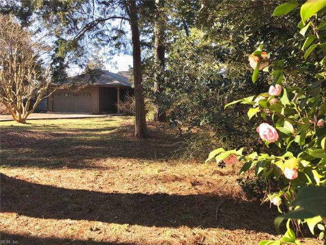 288 N Shore Cir, Mathews County, VA 23128 (#10244603) :: Berkshire Hathaway HomeServices Towne Realty