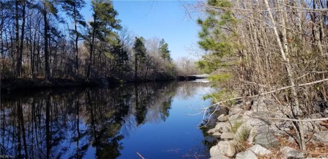 Par B George Washington Hwy S Hwy S, Chesapeake, VA 23323 (#10244776) :: The Kris Weaver Real Estate Team
