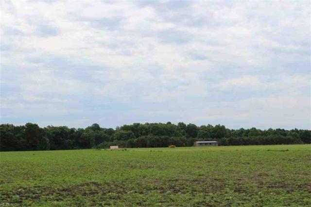 4560 Desert Rd, Suffolk, VA 23434 (MLS #10245415) :: Chantel Ray Real Estate