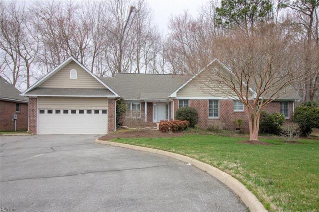 1100 Trieste Ct, Virginia Beach, VA 23454 (#10245615) :: Berkshire Hathaway HomeServices Towne Realty