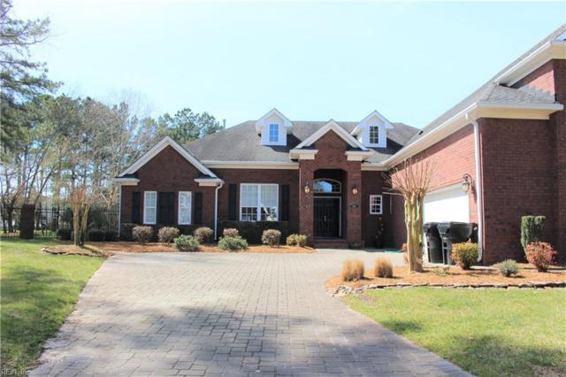 821 Costa Grande Dr, Virginia Beach, VA 23456 (#10245629) :: Berkshire Hathaway HomeServices Towne Realty