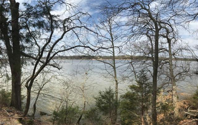 lot 12 Ridgeland Rd, Isle of Wight County, VA 23430 (MLS #10245879) :: Chantel Ray Real Estate