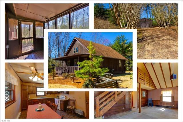 8727 Barnes Rd, James City County, VA 23089 (#10246005) :: The Kris Weaver Real Estate Team