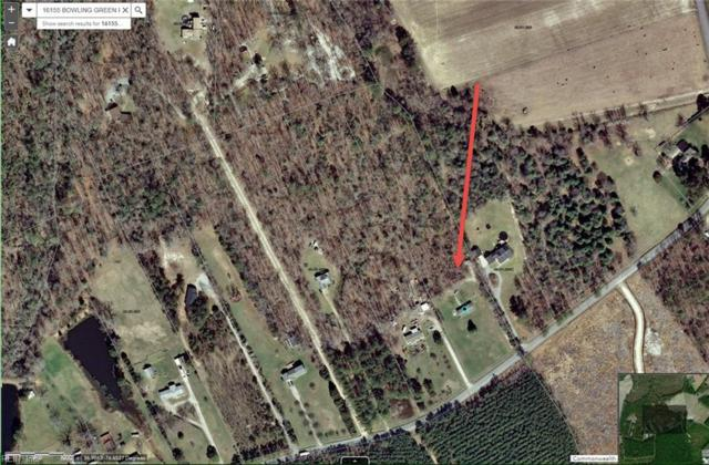 16155 Bowling Green Rd, Isle of Wight County, VA 23487 (#10246078) :: 757 Realty & 804 Homes