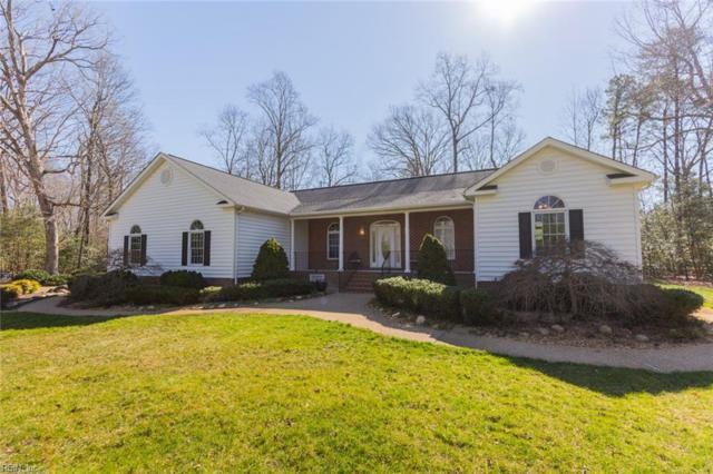 8912 Oak Lawn Way, James City County, VA 23168 (#10246109) :: The Kris Weaver Real Estate Team
