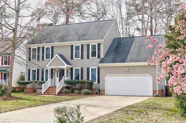 341 Spice Bush Ct, Chesapeake, VA 23320 (MLS #10246299) :: Chantel Ray Real Estate
