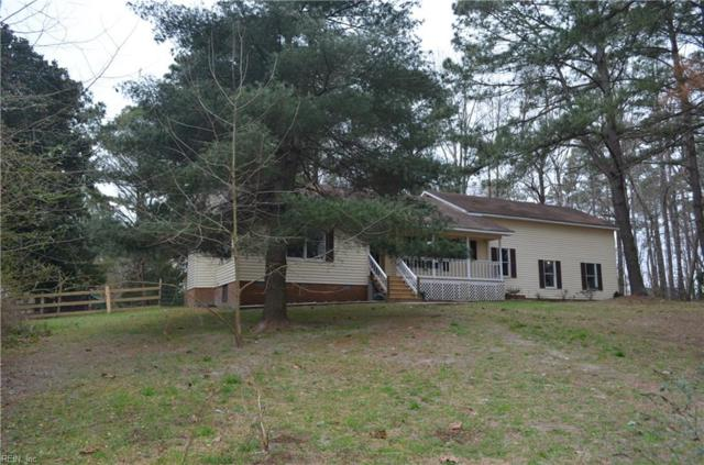 20030 Rolling Acres Ln, Isle of Wight County, VA 23430 (#10246860) :: Abbitt Realty Co.