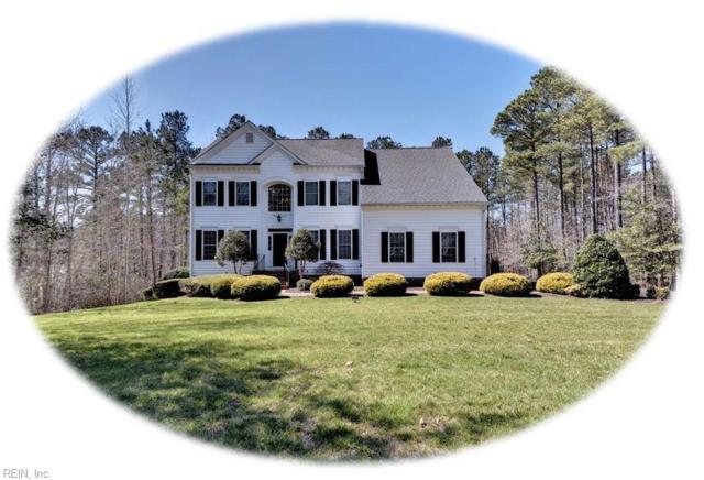 9101 Manorwood Way, James City County, VA 23168 (#10246887) :: The Kris Weaver Real Estate Team