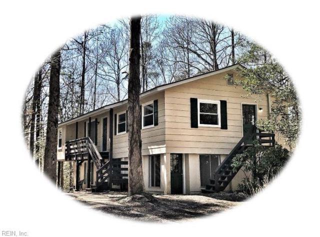 9405 Barnes Rd, James City County, VA 23168 (#10247312) :: The Kris Weaver Real Estate Team