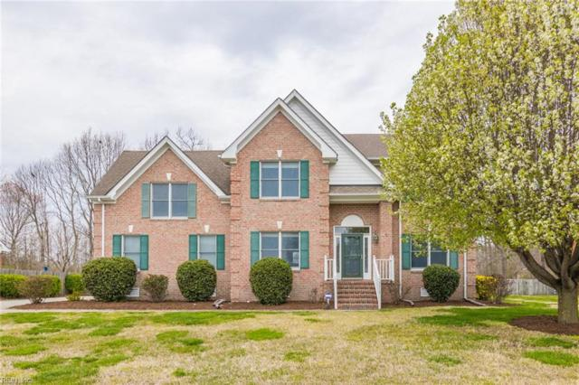 3313 Mintonville Point Dr, Suffolk, VA 23435 (MLS #10249517) :: AtCoastal Realty