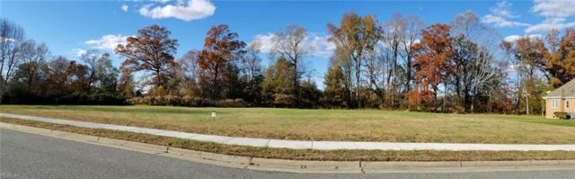 141 Green Spring Dr, Suffolk, VA 23435 (MLS #10250016) :: Chantel Ray Real Estate