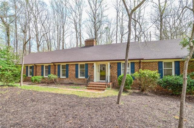 116 Jerdone Rd, James City County, VA 23185 (#10250689) :: Chad Ingram Edge Realty