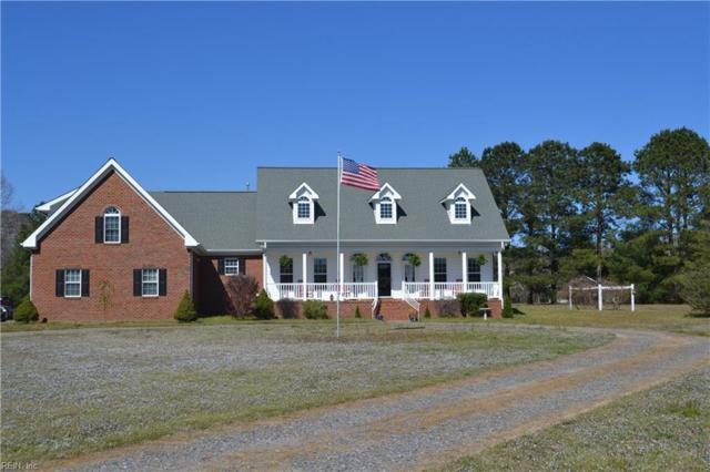 10329 Stallings Creek Dr, Isle of Wight County, VA 23430 (#10251019) :: Upscale Avenues Realty Group