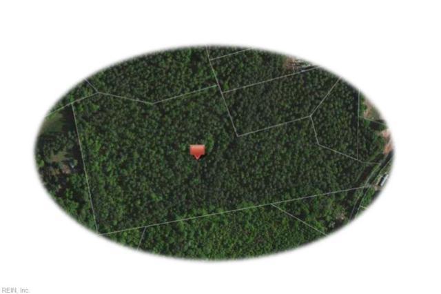 LOT 10 Mt Nebo Rd, New Kent County, VA 23011 (MLS #10251230) :: AtCoastal Realty