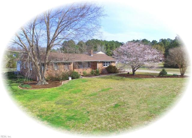 10367 Stallings Creek Dr, Isle of Wight County, VA 23430 (#10251507) :: Upscale Avenues Realty Group