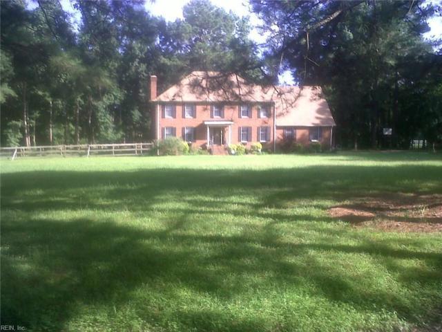 413 Peaceful Rd, Chesapeake, VA 23322 (MLS #10251989) :: AtCoastal Realty