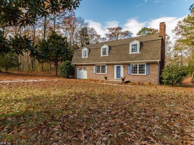 3166 Poplar Dr, Isle of Wight County, VA 23430 (MLS #10253160) :: Chantel Ray Real Estate