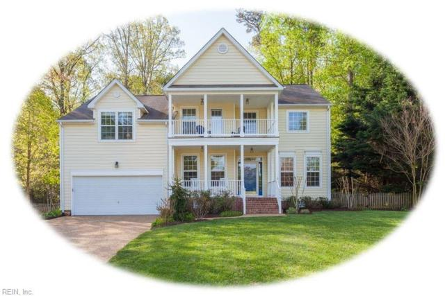 3741 Captain Wynne Dr D, James City County, VA 23185 (MLS #10253718) :: Chantel Ray Real Estate
