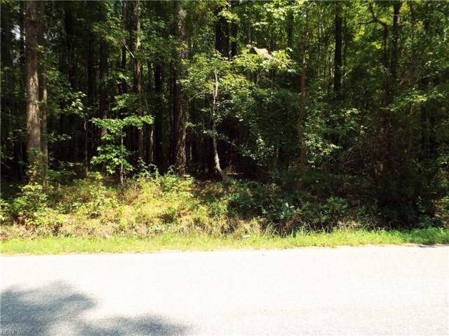 LOT 17 Browns Ave, Southampton County, VA 23866 (#10253734) :: Abbitt Realty Co.