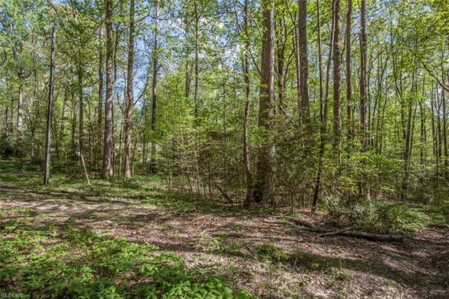 5.71AC New Upton Farms Ln, Gloucester County, VA 23061 (#10253884) :: AMW Real Estate