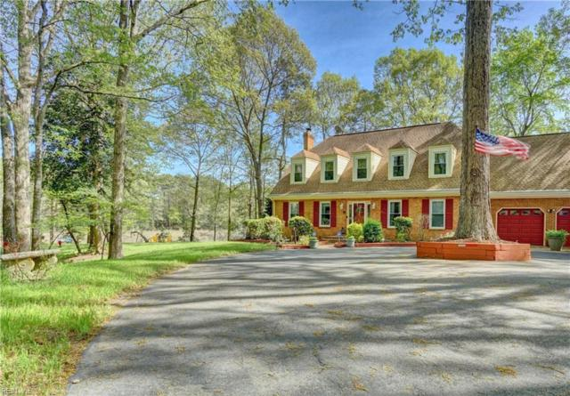 25 Saint Catherine Dr, Isle of Wight County, VA 23314 (#10254060) :: Berkshire Hathaway HomeServices Towne Realty