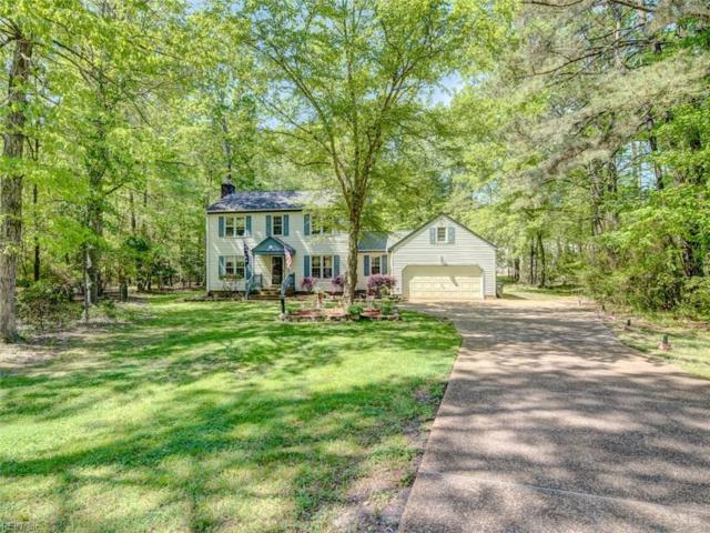 123 Arena St, James City County, VA 23185 (MLS #10254178) :: Chantel Ray Real Estate