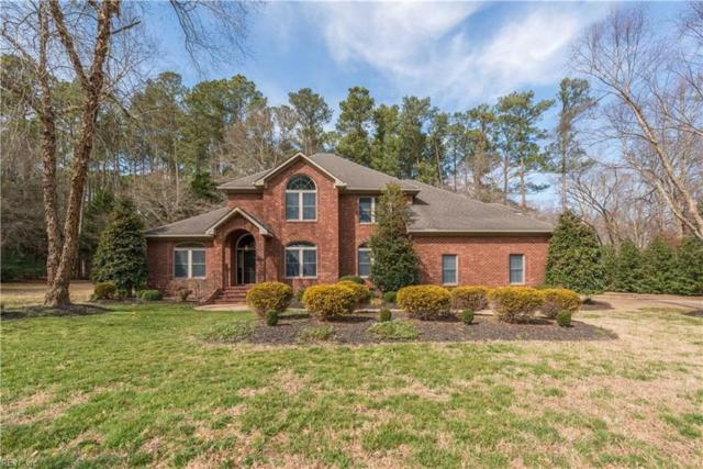 105 Stumpy Lake Ct, Suffolk, VA 23434 (#10254232) :: Atlantic Sotheby's International Realty