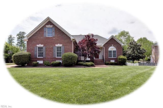 4047 Powhatan Secondary, James City County, VA 23188 (MLS #10254530) :: Chantel Ray Real Estate