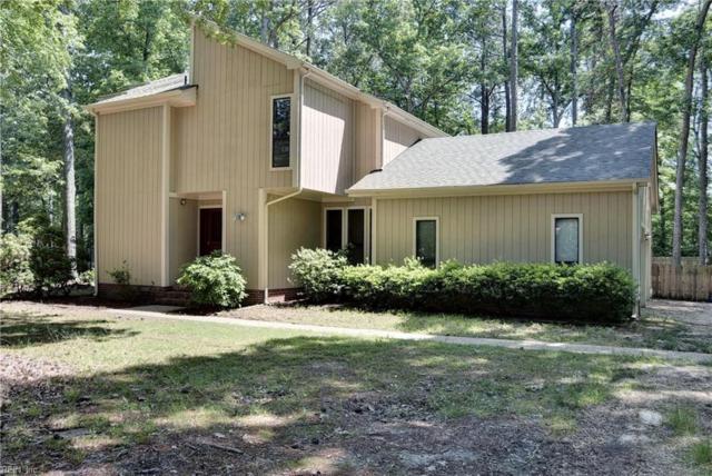 103 Arena St, James City County, VA 23185 (MLS #10254790) :: Chantel Ray Real Estate