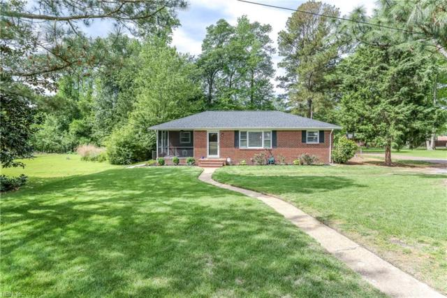 420 Susan Dr, Chesapeake, VA 23320 (#10255483) :: Vasquez Real Estate Group