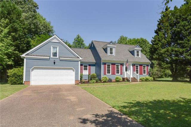 306 Clipper Creek Ln, Isle of Wight County, VA 23430 (MLS #10255867) :: Chantel Ray Real Estate