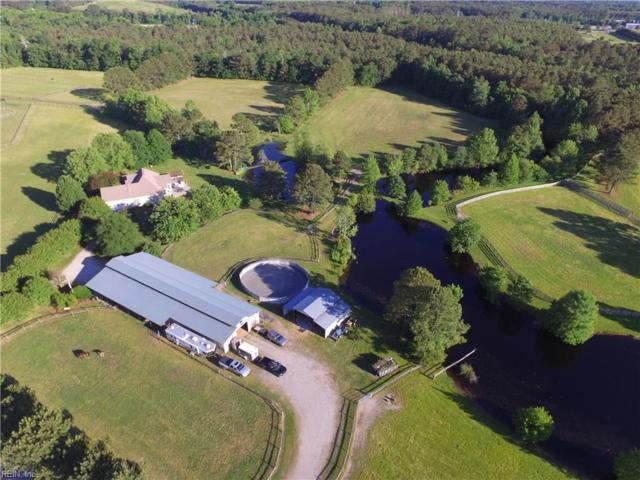 2455 Lake Cohoon Rd, Suffolk, VA 23434 (#10256503) :: Abbitt Realty Co.
