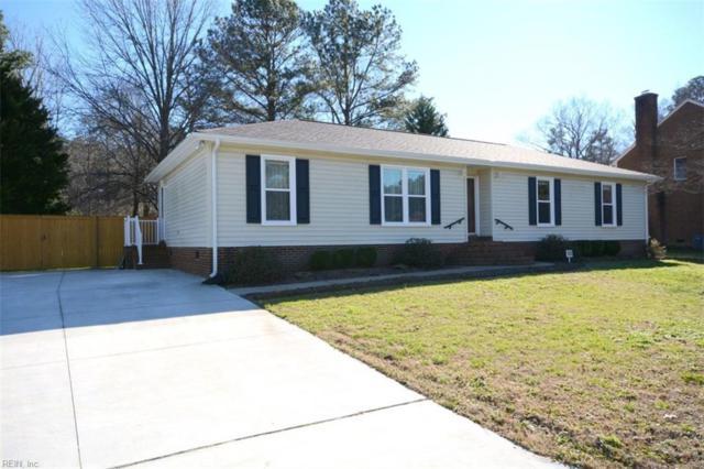 707 Wood Duck Ln, Chesapeake, VA 23323 (MLS #10256946) :: AtCoastal Realty