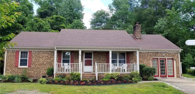 300 Appaloosa Trl, Chesapeake, VA 23323 (#10257097) :: Abbitt Realty Co.