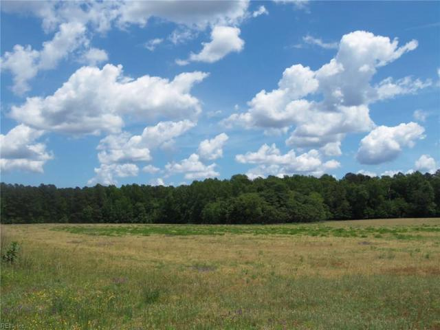 238+ac Modest Neck Rd, Isle of Wight County, VA 23866 (#10257195) :: The Kris Weaver Real Estate Team